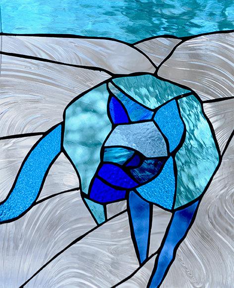 BLUE WILD DOG