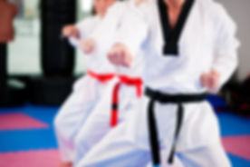People in a gym in martial arts training exercising Taekwondo, the trainer has a black belt.jpg