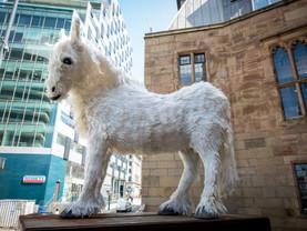 Liverpool Plinth artwork celebrates city's working horses