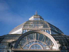 Global Scouse Day at Sefton Park Palm House