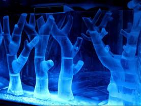 Liverpool Christmas Ice Festival adds seasonal sparkle
