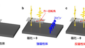 5. 磁気光学効果の新たな起源を解明-反強磁性金属での磁気光学カー効果を世界で初めて観測-