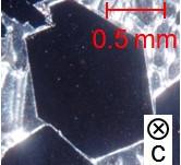 新しい重い電子系β-YbAlB4における超伝導と量子臨界性の発見