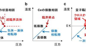 価数の揺らぎが引き起こす電子の「量子」超臨界状態の発見