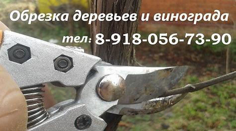 Славянск-на-Кубани обрезка сада
