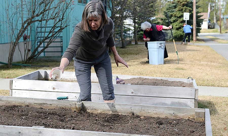 Planting raised gardens