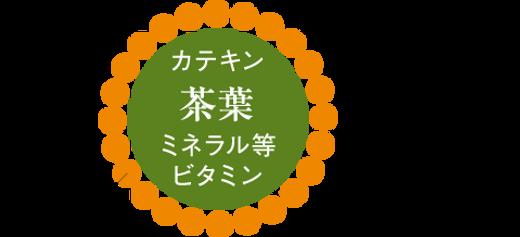 コーティング図.png
