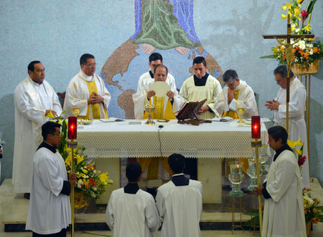 Las abundantes gracias en la Provincia México-Cuba