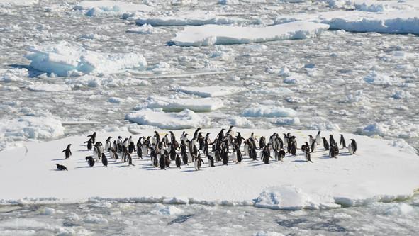 È in Antartide il parco eolico più meridionale del mondo