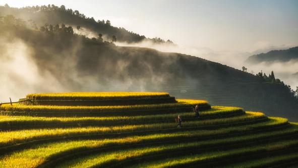 Da sole e vento il 30 per cento dell'energia del Vietnam nel 2030