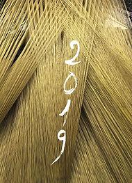 2019-Recto.jpg
