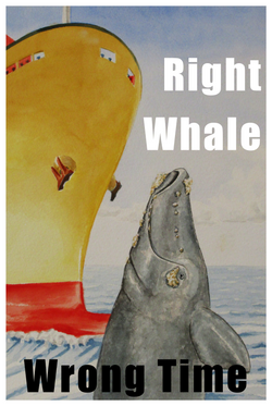 Right Whale v2