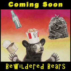 Bewildered Bears v1