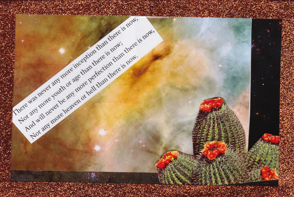 winter 2016 postcard collective-space-cactus.jpg