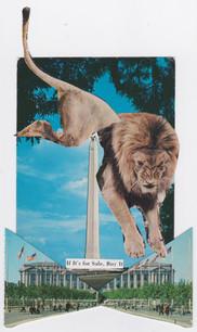 fall 2016 postcard collective-lion-lying.jpeg