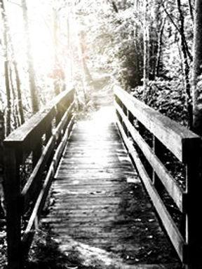 bridge%25252C%252520Lucia_edited_edited_edited.jpg