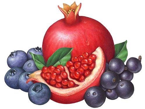 Blueberry-Pomegranate Jelly