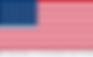 flag emb e cons eua vert - PT PNG Transp