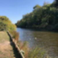 Hilsea Lines waterway and ducks