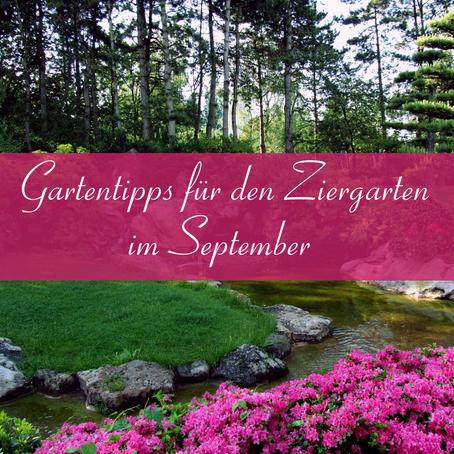 Gartentipps für den Ziergarten im September