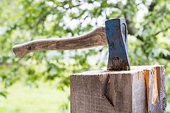 wood-3075862_1920.jpg