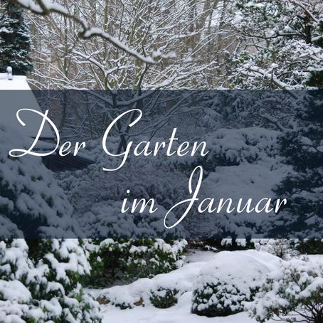 Der Garten im Januar