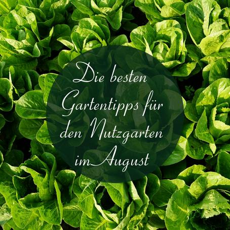 Die besten Gartentipps für den Nutzgarten im August