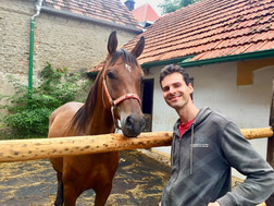 Petr si koupil koně