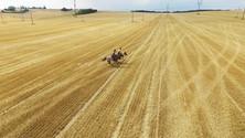Natáčení s dronem na posekaných polích