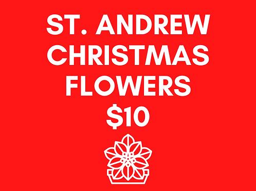 St. Andrew Christmas Flowers