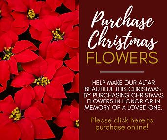 Christmas Flowers (Website).png