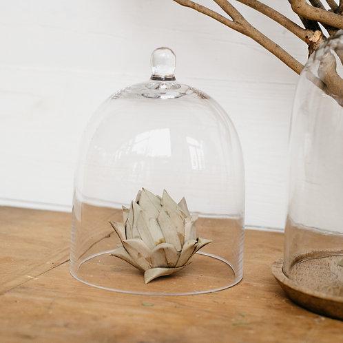 Glass cloche covering artichoke filler. Sold by Salt Creek Mercantile.