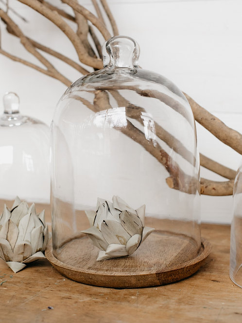 Glass cloche with wooden base, displayed with artichoke filler. Sold by Salt Creek Mercantile.
