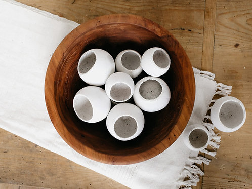 Dried Natural Bell Cup Vase Filler