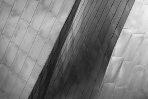 D1429419D Chicago by Duane Birkey Zen BW