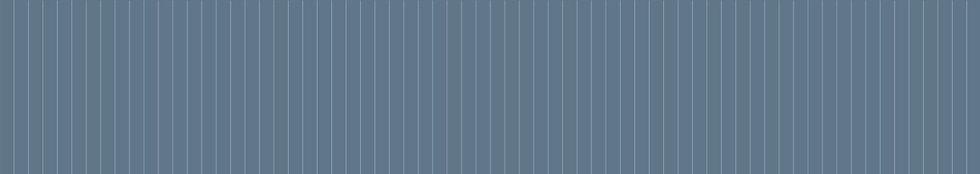 Web Background.jpg