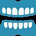 歯茎.png
