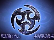 Digital Ninjas logo.PNG