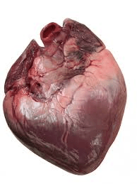 Whole Pigs Hearts x 2