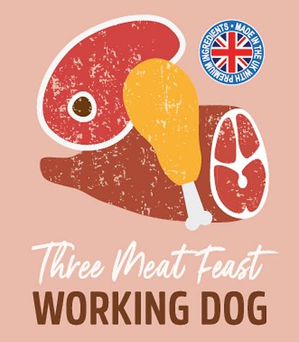 Raw Menu Working Dog 3 Meat Feast 500g