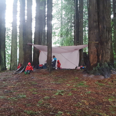 Teacher Resources- Knots and Shelters.