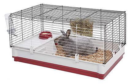 B.-Best-rabbit-cage.jpg