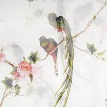 alexander-mcqueen-2007-Bird-of-Paradise-01-1_convert_SS.jpg