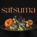 satsuma.cover.jpg