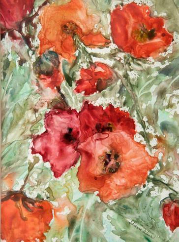 Sharon Wier -poppies.jpg