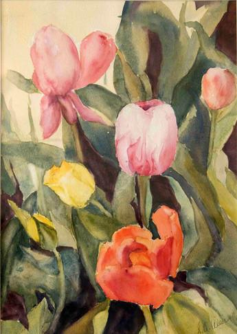 Sharon Wier Tulips.jpg