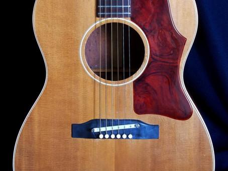 Gibson b-25 (lg-2). 1964 serial 204352