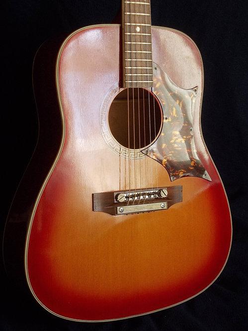 Hoyer  Dove model (1970)