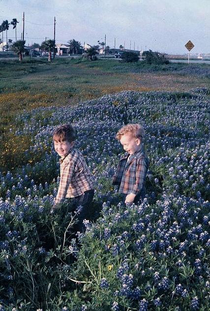 jim me bluebonnets b.jpg