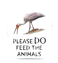 pleasefeed2.png